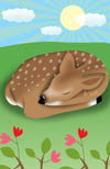 Sleeping bambi
