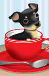 Puppy in teacup