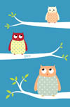 3 owls on tree